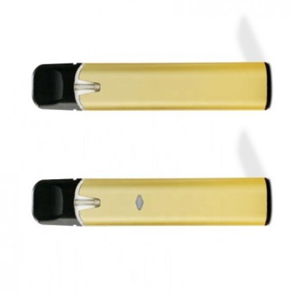 5% Salt Nicotine Prefilled Disposable E Cig Vape Pen
